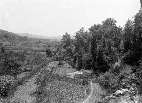 Vista parcial dels camps i dels boscos de can Ribes, a la Cellera de Ter, 1918 (ACGAX. Fons Sadurní Brunet Pi. Autor Sadurní Brunet)