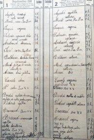 Llista de jornals dels treballadors, 1 i 2.9.1911 (ACGAX. Fons Sadurní Brunet Pi. Dietaris)