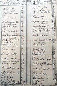 Anotacions en el dietari sobre les hores i feines que feia cada operari de Sadurní Brunet, 11 i 12 de setembre de 1911 (ACGAX. Fons Sadurní Brunet Pi. Dietaris)